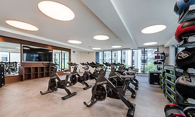 Fitness Weight Room, Symmetry, 2