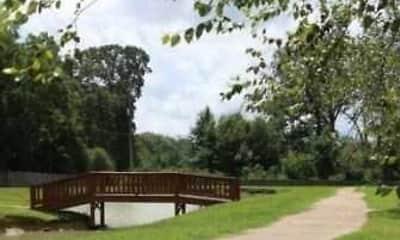 Chesterville Gardens, 2