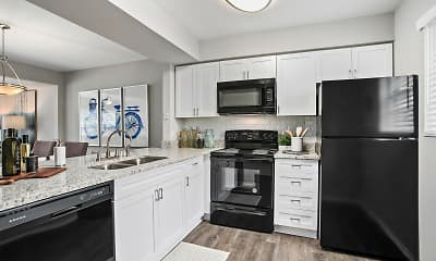 Kitchen, The Coast Townhomes of Naples, 1