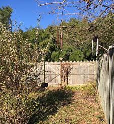 Backyard1.jpeg