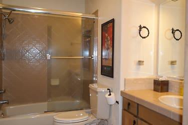 Shower - Tub Combo