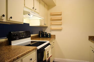Step Saving Kitchen