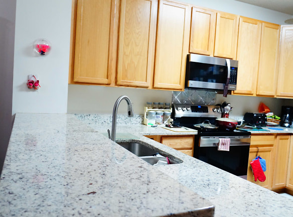 Granite Counters and Stainless Steel Appliance