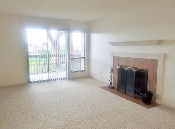 Huge Living room with fireplace