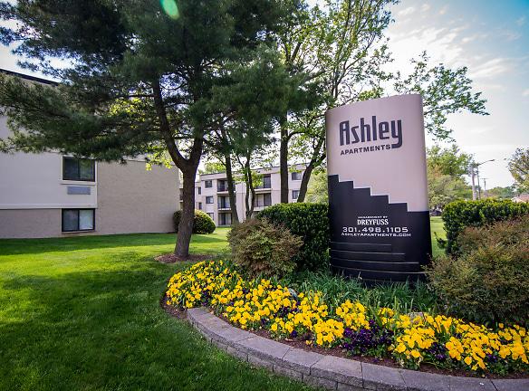 Ashley Apartments Signage 5