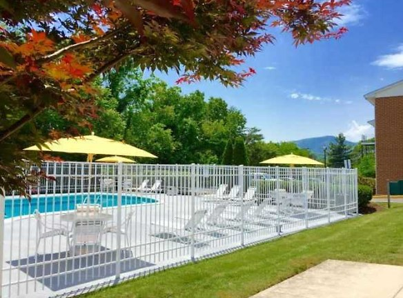 Swimming Pool, Mountain View