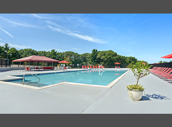 Olympic-size swimming pool and expansive sundeck