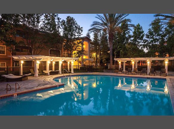 Take a swim in our saline swimming pool