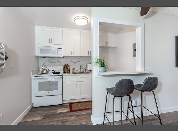 Modern Kitchen with Quartz Counter and New Cabinets