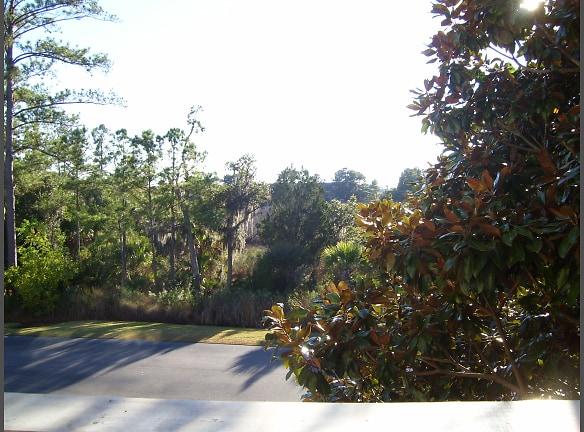 320 Hoover Creek 17Nov10 038.jpg