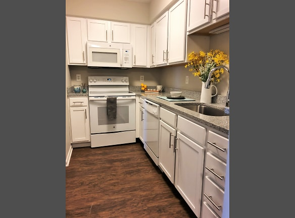 Newly Renovated Apartments
