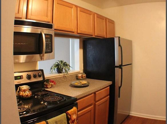 Interior- Kitchen