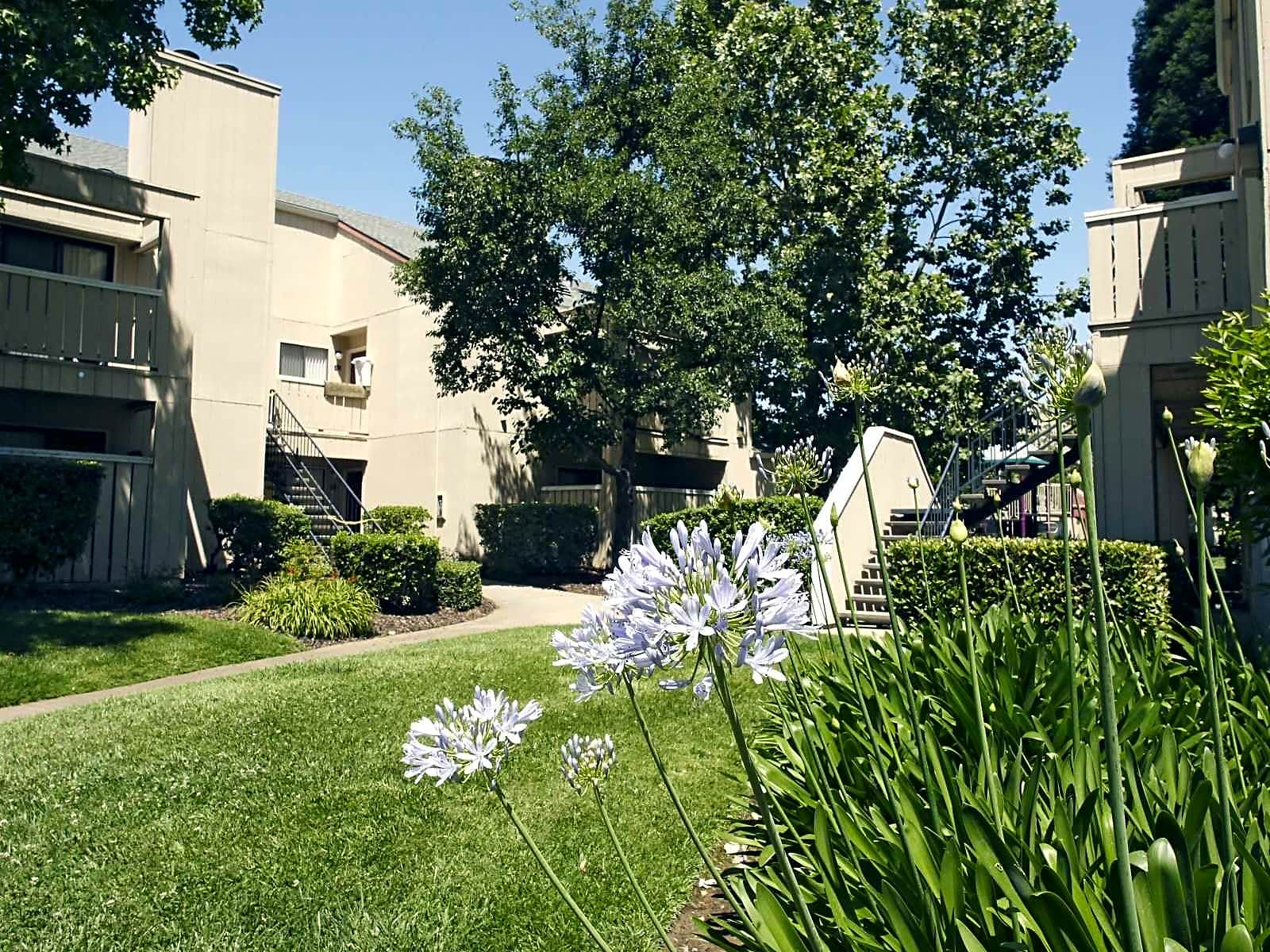 Arbor Pointe for rent in Sacramento