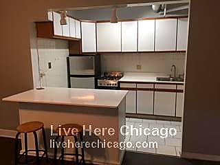 Search Rentals In Lincoln Park Chicago Illinois At Rentals Com
