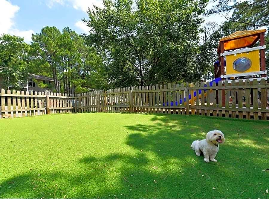 Dog park that your furry friends will enjoy!