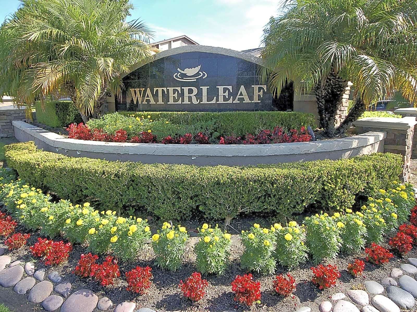 Waterleaf for rent in Vista