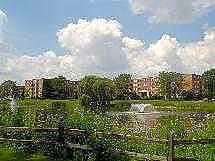 Apartments Near DeVry Colonial Village for DeVry University Students in Addison, IL