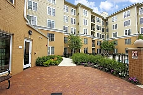 pet friendly apartments in morristown nj pet friendly houses for