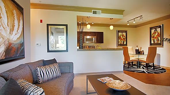 Apartment Hunters St Petersburg Fl