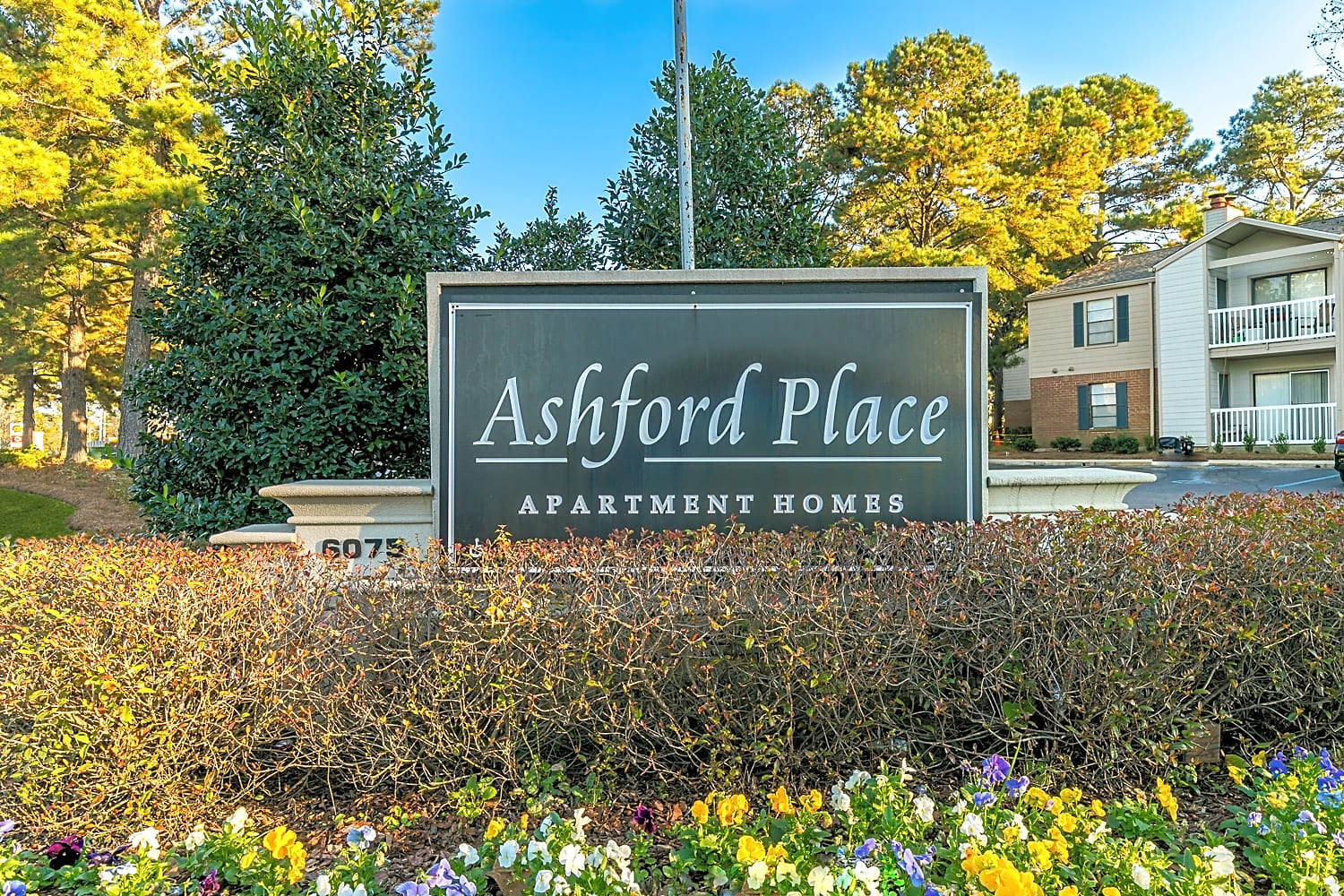 Apartments Near Spring Hill Ashford Place Apartment Homes for Spring Hill College Students in Mobile, AL
