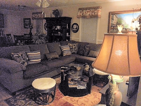 Living area/ dining room
