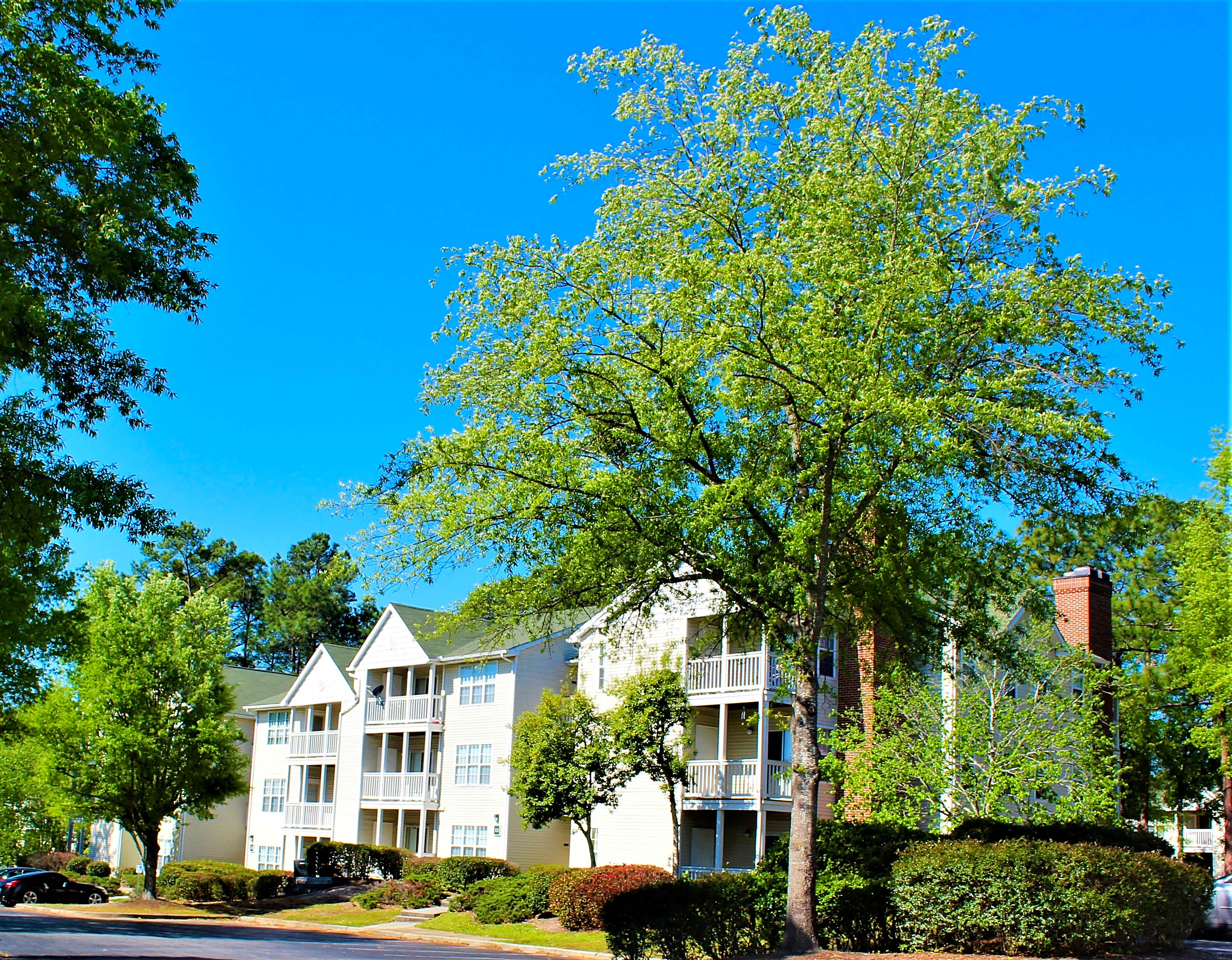 Apartments Near UofSC Greenbrier Apartments for University of South Carolina Students in Columbia, SC