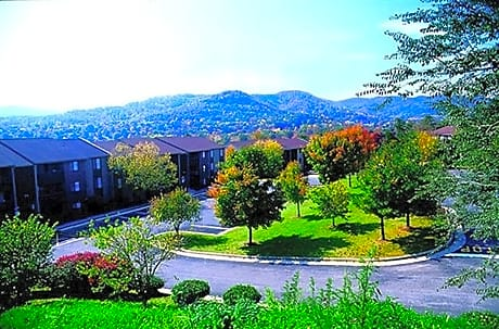 Photo: Roanoke Apartment for Rent - $857.00 / month; 1 Bd & 1 Ba