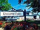 English Oaks - Savannah