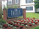 Trellis At Lee's Mill - Newport News - Entrance signage