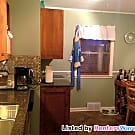 Gorgeous 2 Bedroom with Updated Kitchen - Minneapolis, MN 55407