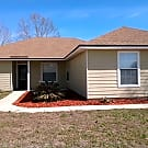 3202 Chantilly Ct - Orange Park, FL 32073