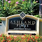 Ashland Pines - Stone Mountain, GA 30088