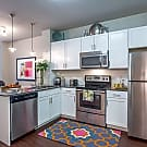 Rise Apartments - Austin, TX 78744