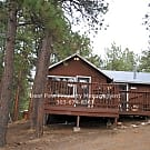 Cute Cabin - Evergreen, CO 80439