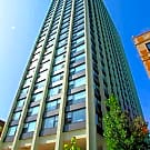 South Shore Beach Apartments - Chicago, IL 60649