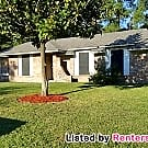 Adorable and Affordable!!! - Houston, TX 77088