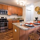Innovo Living on Waters - Tampa, FL 33614
