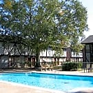 Salem Square - Friendswood, TX 77546