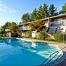 Sun Valley Apartments - Pleasant Hill, CA 94523