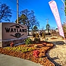 The Wayland - Conway, AR 72034