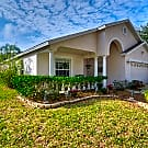 Gorgeous 4bdrm 2 bath with pool - Tampa, FL 33625
