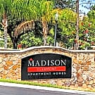 Madison Clermont - Clermont, FL 34711