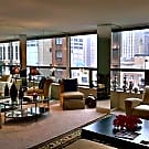 1 br, 1 bath Apartment - 110 E Delaware Pl, #1003 - Chicago, IL 60611
