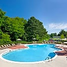Springfield Apartments - Henrico, Virginia 23294