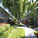 The Willows Townhomes - San Leandro, CA 94578