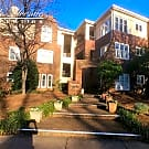 325 Queens Rd #6 - Charlotte, NC 28204