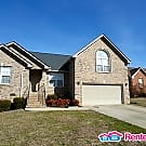 4bd/3ba Brick Home in TRIPLE CROWN subdivision - Mount Juliet, TN 37122