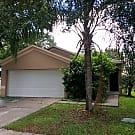 9851 Morris Glen Way - Tampa, FL 33637