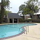 The Hamptons Apartments - Houston, Texas 77062