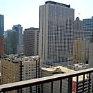 1 br, 1 bath Apartment - 10 E Ontario St, #1611 - Chicago, IL 60611